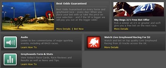 tn_bet365-sports-greyhound-promotions